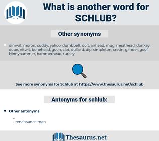 schlub, synonym schlub, another word for schlub, words like schlub, thesaurus schlub