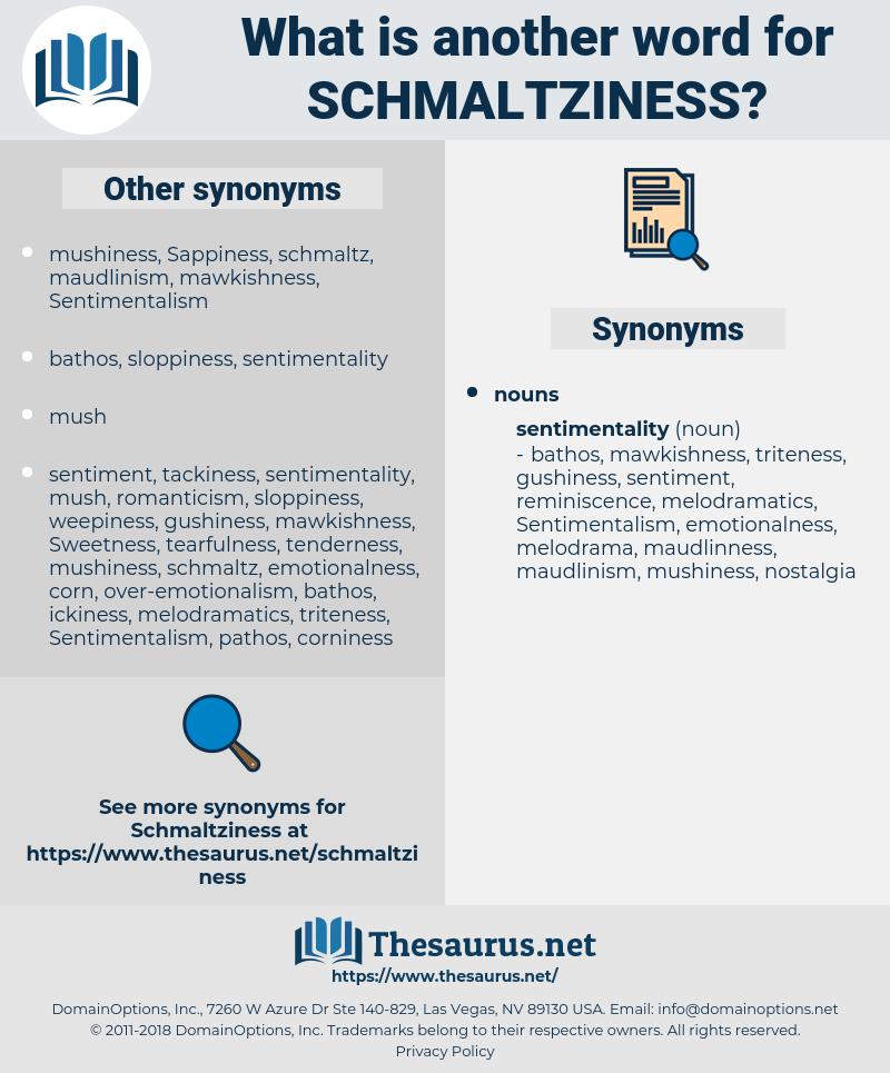 schmaltziness, synonym schmaltziness, another word for schmaltziness, words like schmaltziness, thesaurus schmaltziness