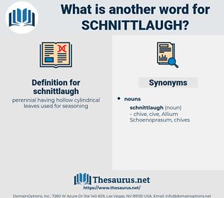 schnittlaugh, synonym schnittlaugh, another word for schnittlaugh, words like schnittlaugh, thesaurus schnittlaugh