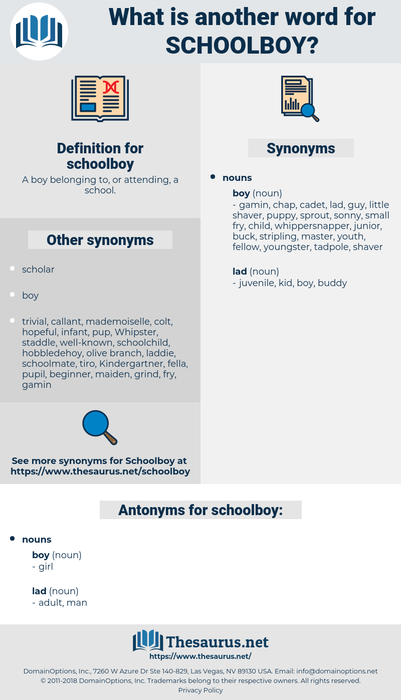 schoolboy, synonym schoolboy, another word for schoolboy, words like schoolboy, thesaurus schoolboy