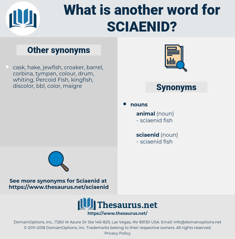 sciaenid, synonym sciaenid, another word for sciaenid, words like sciaenid, thesaurus sciaenid