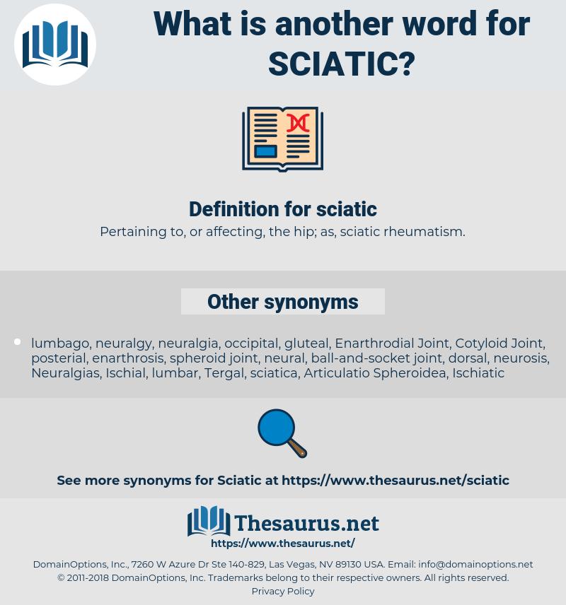 sciatic, synonym sciatic, another word for sciatic, words like sciatic, thesaurus sciatic