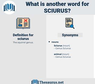 sciurus, synonym sciurus, another word for sciurus, words like sciurus, thesaurus sciurus