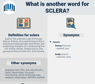 sclera, synonym sclera, another word for sclera, words like sclera, thesaurus sclera