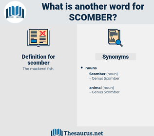 scomber, synonym scomber, another word for scomber, words like scomber, thesaurus scomber