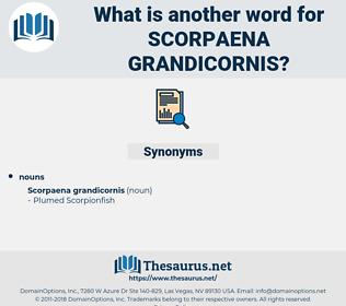 Scorpaena Grandicornis, synonym Scorpaena Grandicornis, another word for Scorpaena Grandicornis, words like Scorpaena Grandicornis, thesaurus Scorpaena Grandicornis