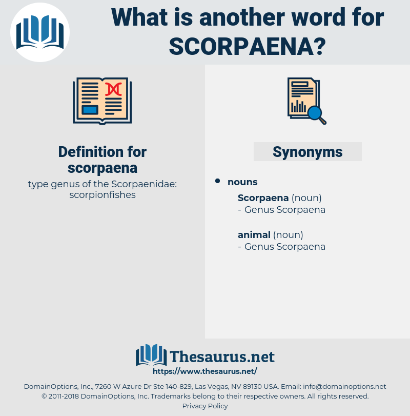 scorpaena, synonym scorpaena, another word for scorpaena, words like scorpaena, thesaurus scorpaena