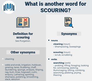 scouring, synonym scouring, another word for scouring, words like scouring, thesaurus scouring