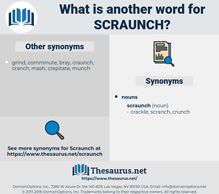 scraunch, synonym scraunch, another word for scraunch, words like scraunch, thesaurus scraunch