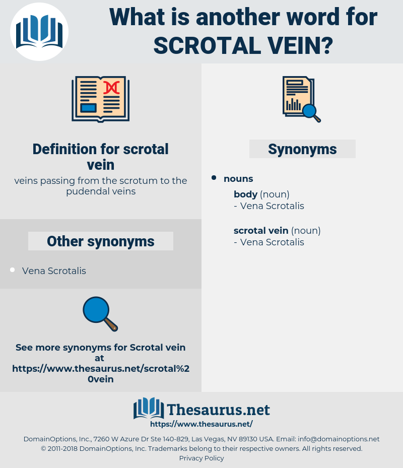 scrotal vein, synonym scrotal vein, another word for scrotal vein, words like scrotal vein, thesaurus scrotal vein
