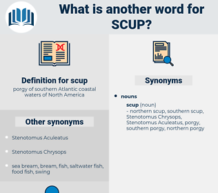 scup, synonym scup, another word for scup, words like scup, thesaurus scup