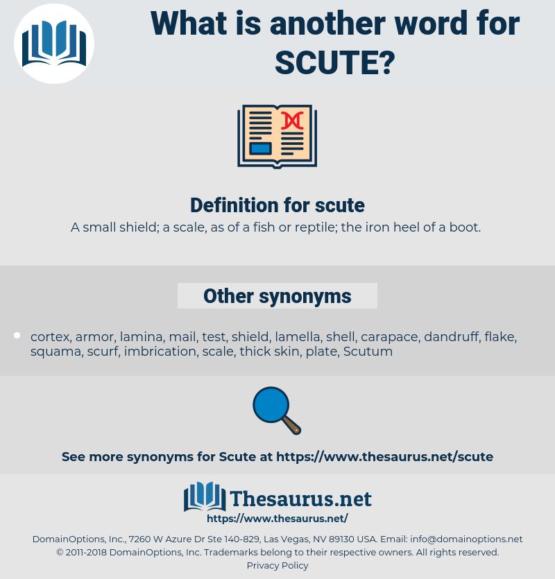 scute, synonym scute, another word for scute, words like scute, thesaurus scute