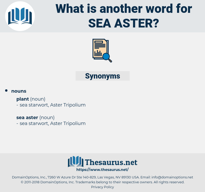 sea aster, synonym sea aster, another word for sea aster, words like sea aster, thesaurus sea aster