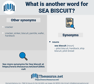 sea biscuit, synonym sea biscuit, another word for sea biscuit, words like sea biscuit, thesaurus sea biscuit