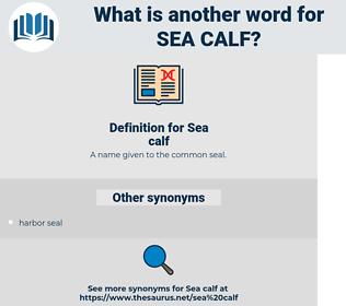 Sea calf, synonym Sea calf, another word for Sea calf, words like Sea calf, thesaurus Sea calf
