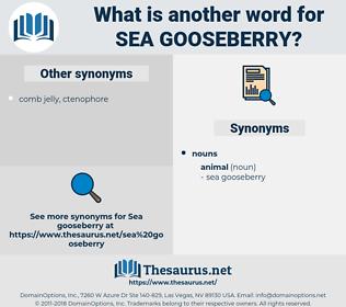 sea gooseberry, synonym sea gooseberry, another word for sea gooseberry, words like sea gooseberry, thesaurus sea gooseberry