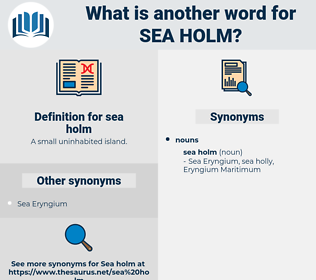 sea holm, synonym sea holm, another word for sea holm, words like sea holm, thesaurus sea holm