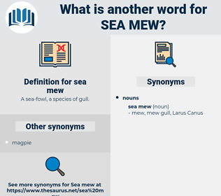 sea mew, synonym sea mew, another word for sea mew, words like sea mew, thesaurus sea mew