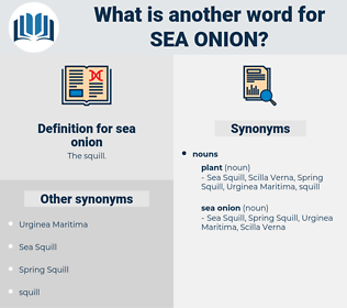sea onion, synonym sea onion, another word for sea onion, words like sea onion, thesaurus sea onion