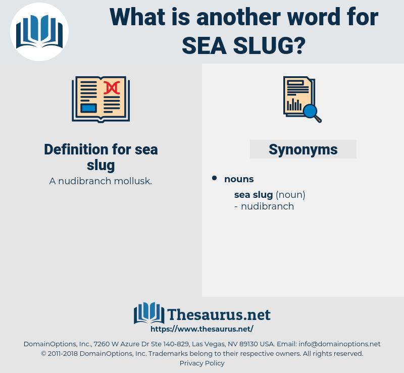sea slug, synonym sea slug, another word for sea slug, words like sea slug, thesaurus sea slug