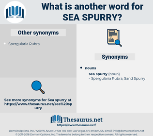 Sea Spurry, synonym Sea Spurry, another word for Sea Spurry, words like Sea Spurry, thesaurus Sea Spurry