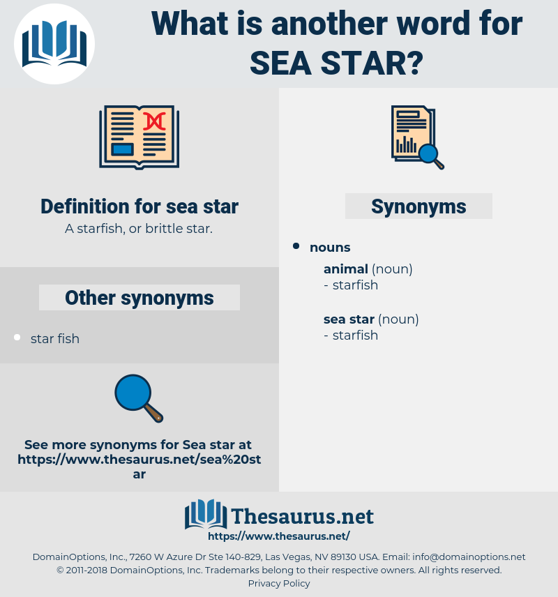 sea star, synonym sea star, another word for sea star, words like sea star, thesaurus sea star