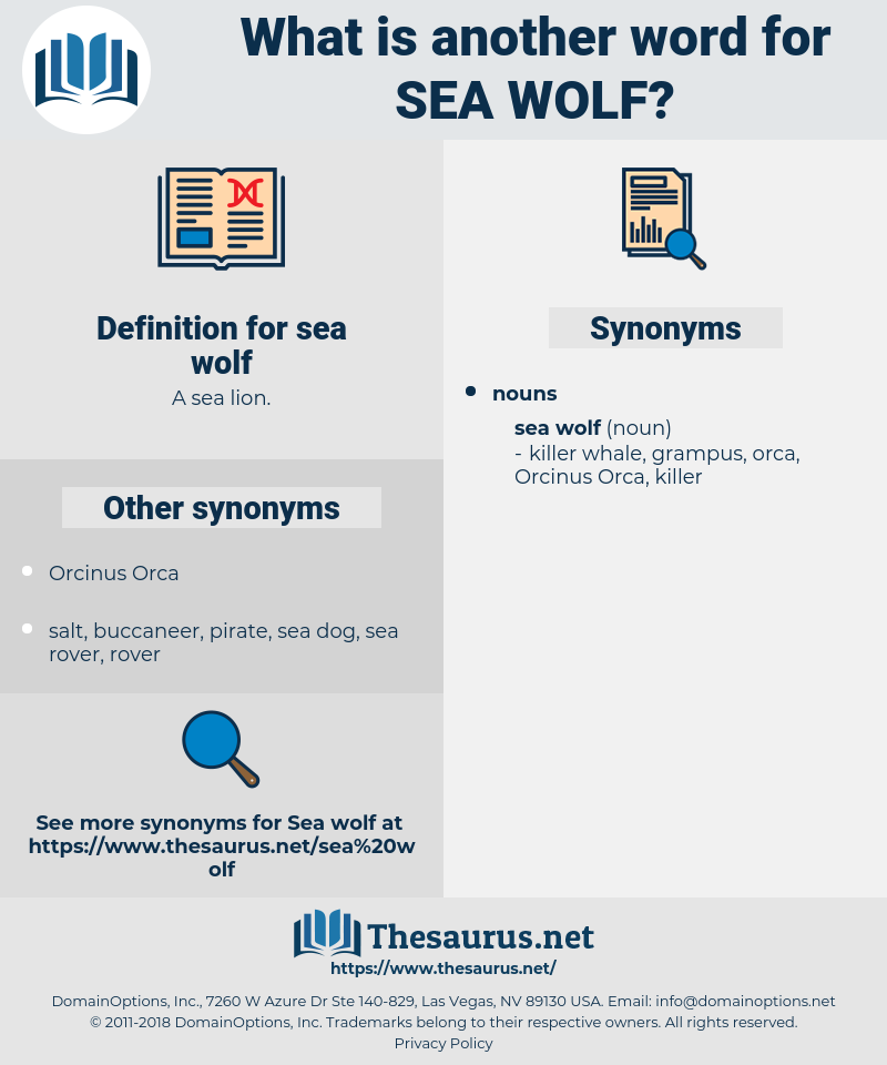 sea wolf, synonym sea wolf, another word for sea wolf, words like sea wolf, thesaurus sea wolf
