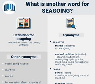 seagoing, synonym seagoing, another word for seagoing, words like seagoing, thesaurus seagoing