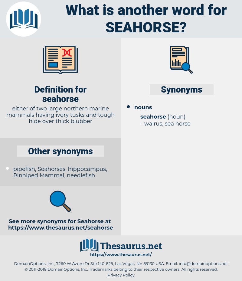seahorse, synonym seahorse, another word for seahorse, words like seahorse, thesaurus seahorse