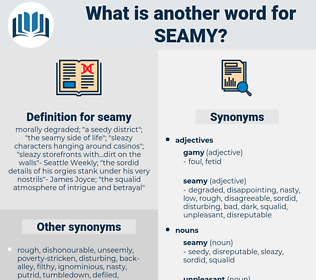 seamy, synonym seamy, another word for seamy, words like seamy, thesaurus seamy