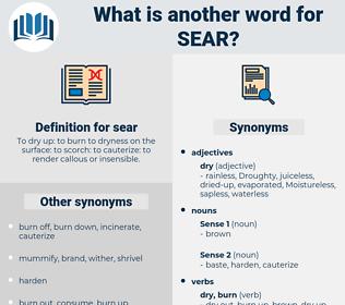 sear, synonym sear, another word for sear, words like sear, thesaurus sear