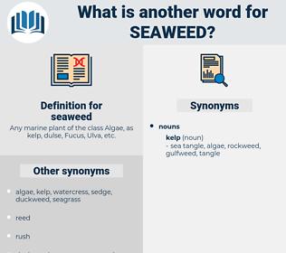 seaweed, synonym seaweed, another word for seaweed, words like seaweed, thesaurus seaweed