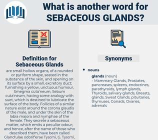 Sebaceous Glands, synonym Sebaceous Glands, another word for Sebaceous Glands, words like Sebaceous Glands, thesaurus Sebaceous Glands