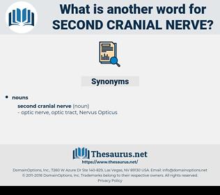 second cranial nerve, synonym second cranial nerve, another word for second cranial nerve, words like second cranial nerve, thesaurus second cranial nerve