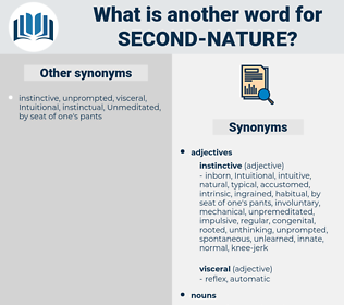 second nature, synonym second nature, another word for second nature, words like second nature, thesaurus second nature