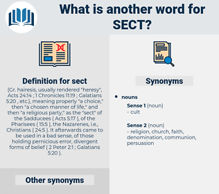 sect, synonym sect, another word for sect, words like sect, thesaurus sect
