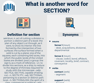 section, synonym section, another word for section, words like section, thesaurus section