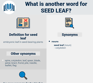 seed leaf, synonym seed leaf, another word for seed leaf, words like seed leaf, thesaurus seed leaf