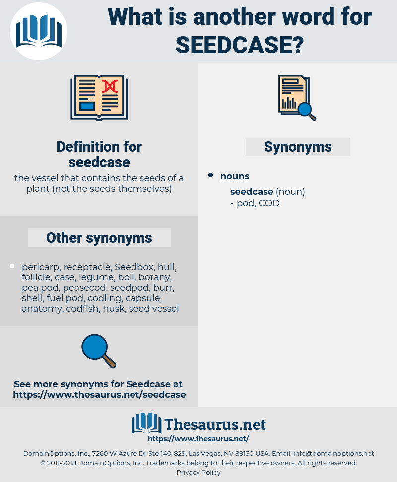 seedcase, synonym seedcase, another word for seedcase, words like seedcase, thesaurus seedcase