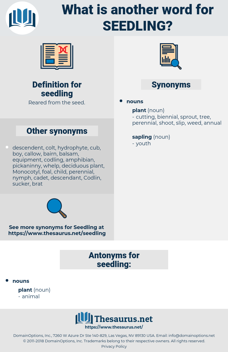 seedling, synonym seedling, another word for seedling, words like seedling, thesaurus seedling