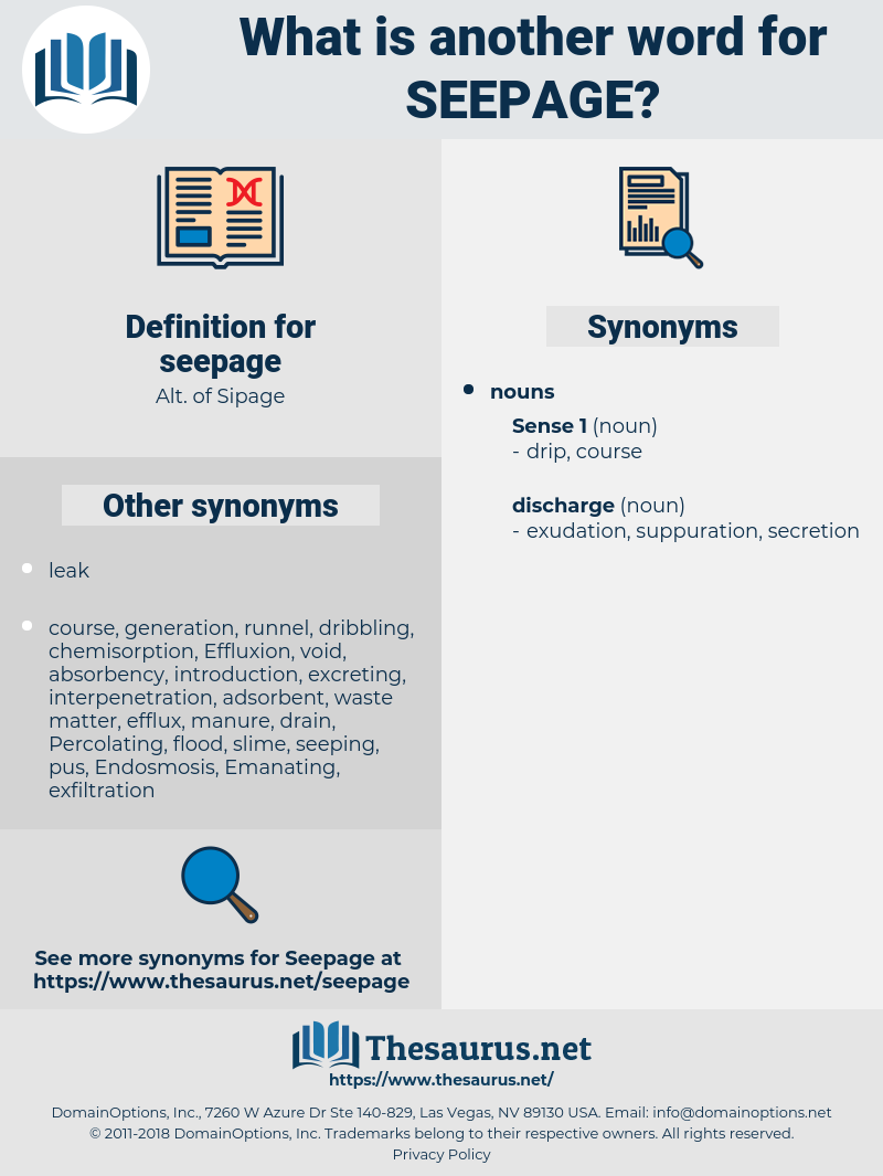 seepage, synonym seepage, another word for seepage, words like seepage, thesaurus seepage