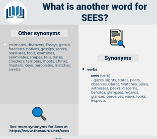 sees, synonym sees, another word for sees, words like sees, thesaurus sees