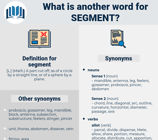 segment, synonym segment, another word for segment, words like segment, thesaurus segment
