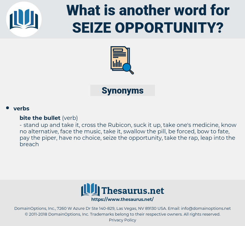 seize opportunity, synonym seize opportunity, another word for seize opportunity, words like seize opportunity, thesaurus seize opportunity