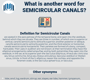 Semicircular Canals, synonym Semicircular Canals, another word for Semicircular Canals, words like Semicircular Canals, thesaurus Semicircular Canals