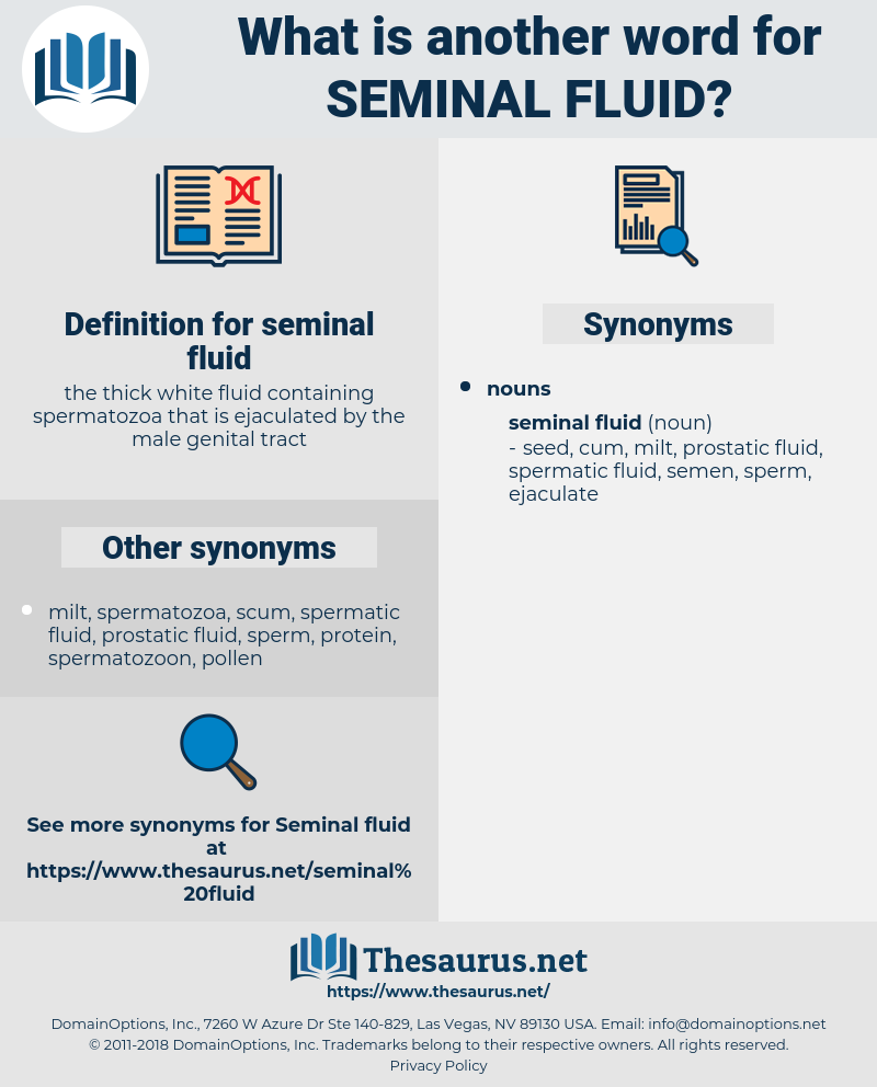 seminal fluid, synonym seminal fluid, another word for seminal fluid, words like seminal fluid, thesaurus seminal fluid