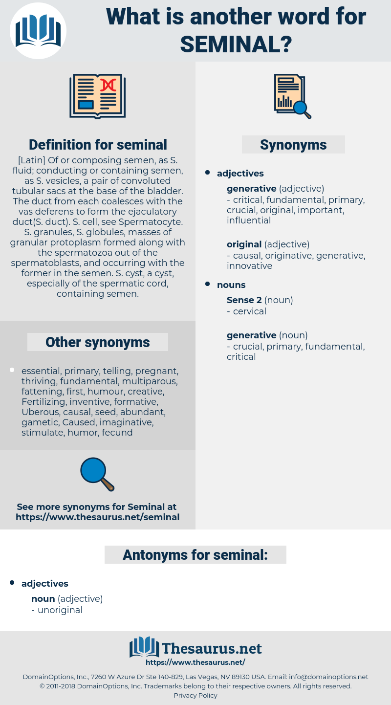 seminal, synonym seminal, another word for seminal, words like seminal, thesaurus seminal