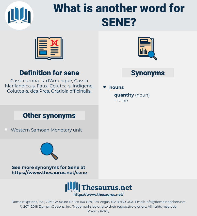 sene, synonym sene, another word for sene, words like sene, thesaurus sene