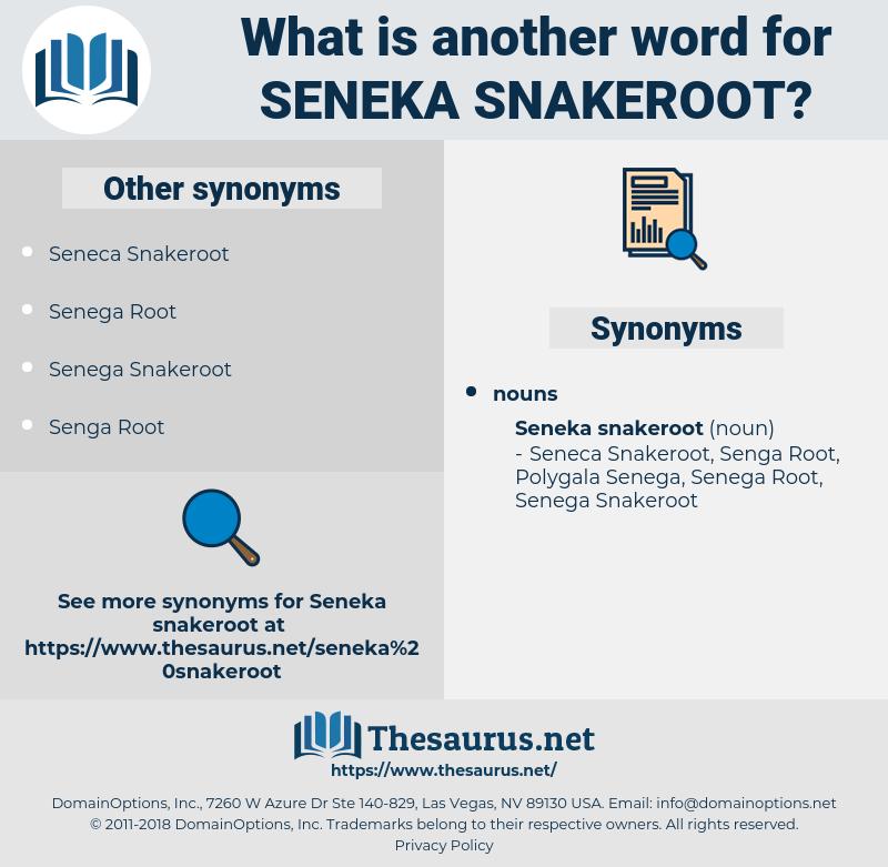 Seneka Snakeroot, synonym Seneka Snakeroot, another word for Seneka Snakeroot, words like Seneka Snakeroot, thesaurus Seneka Snakeroot