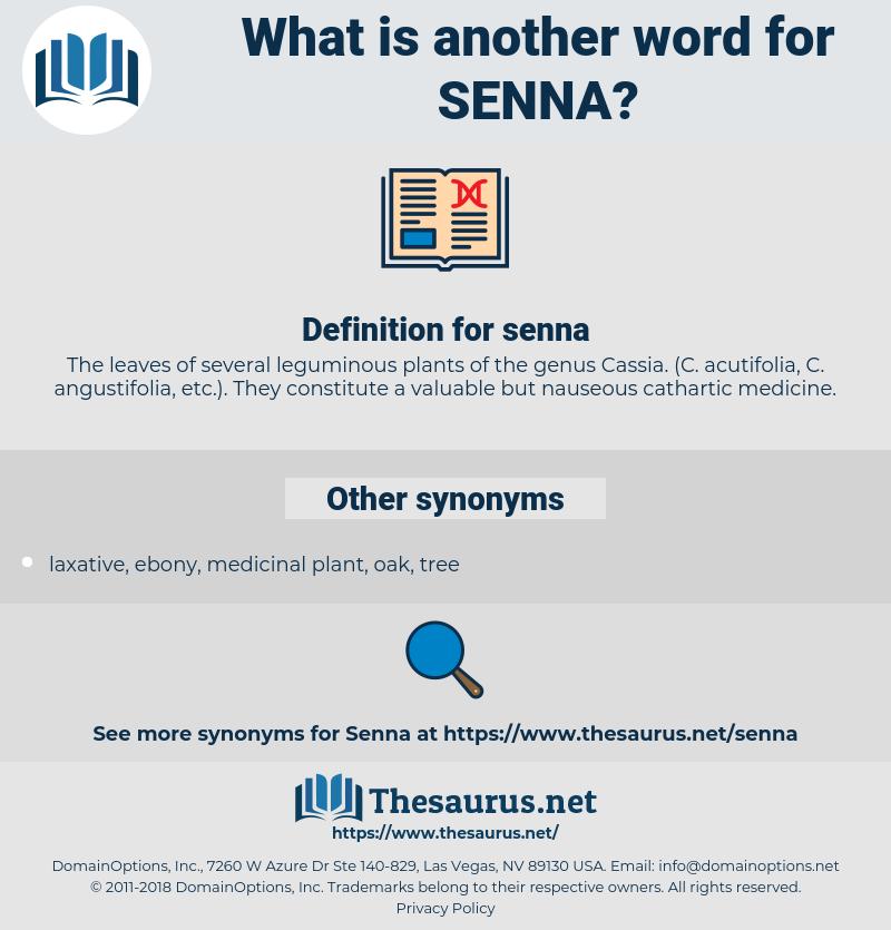 senna, synonym senna, another word for senna, words like senna, thesaurus senna